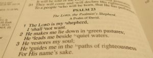 psalms-for-difficult-days
